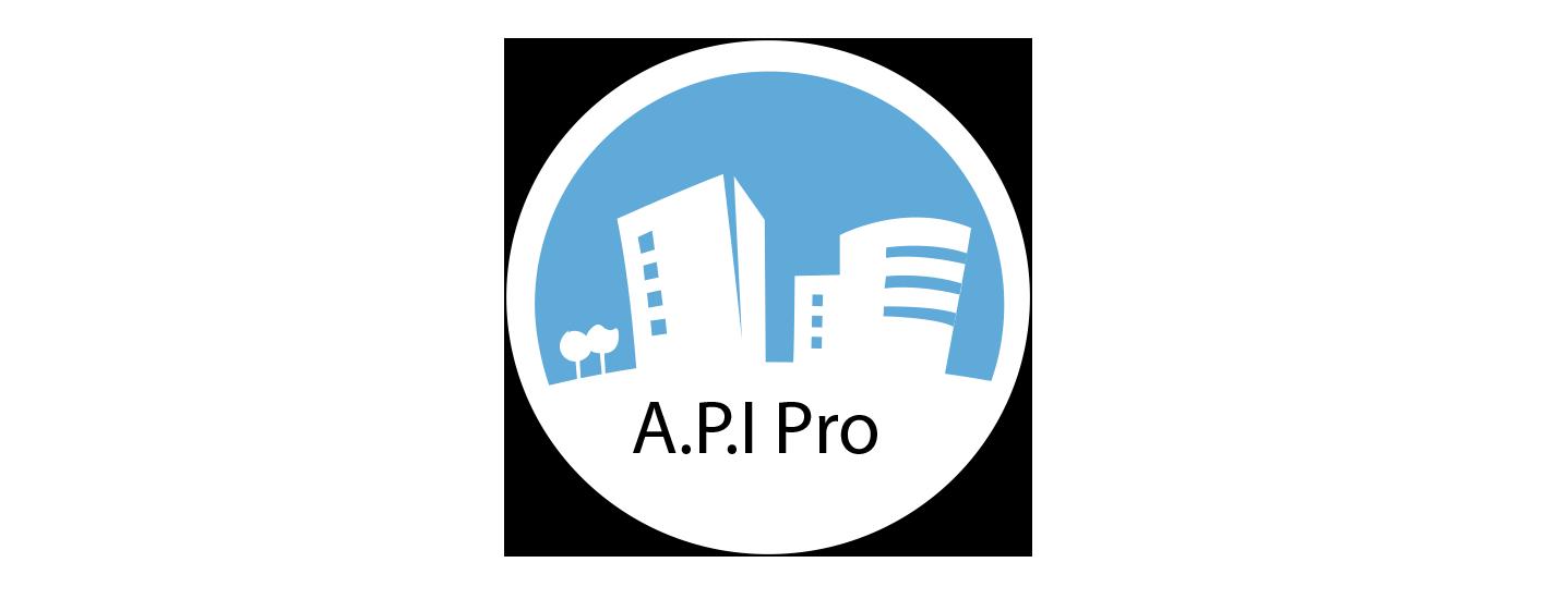 PRO A.P.I